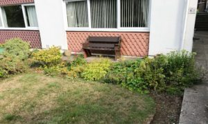 Large garden boarder in need of maintance