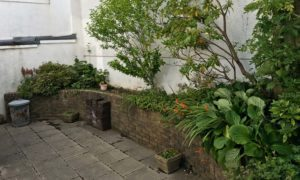 A large bricked garden bed in need of maintenance.