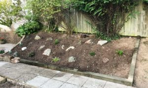 Gardener in Plymouth changing the look of this rockery garden
