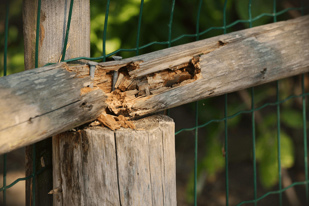 Fence Inspection: Image of a broken wooden post and rail fence.