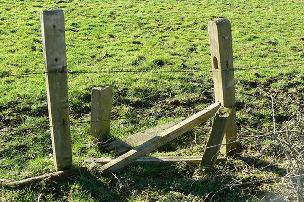 Fencing Repair - Image of broken wooden agricultural fencing.