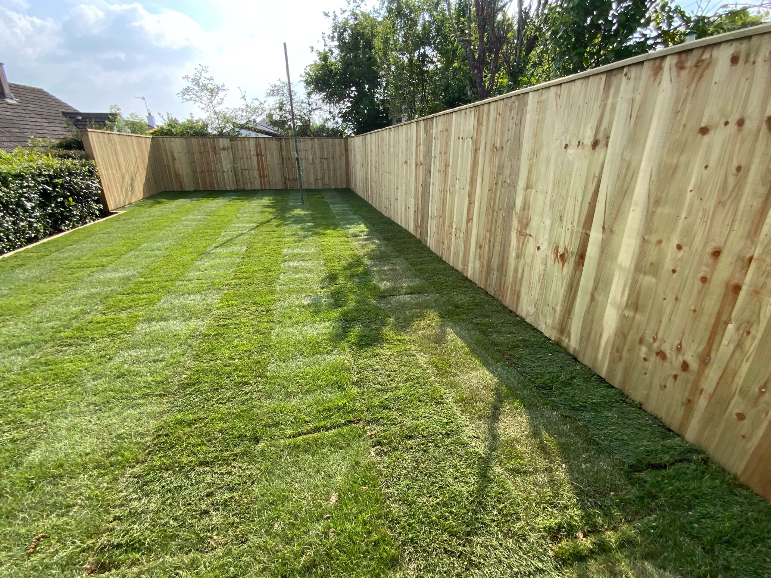 Lawn Care: Image of a well maintained back lawn.