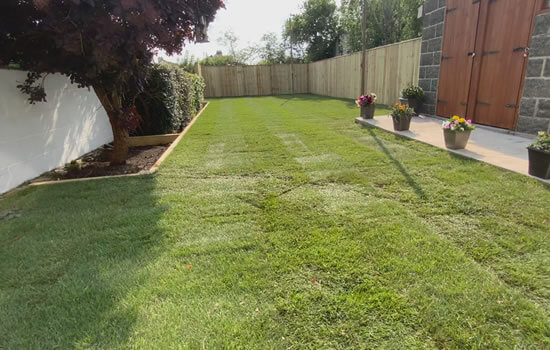 Turf Services: Image of a garden with a newly laid lawn.